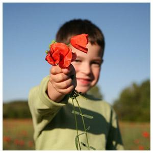 Meilleurs sites de livraison de fleurs livraison rapide for Site livraison fleurs